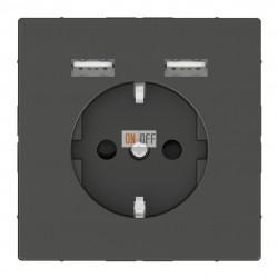 Розетка Schuko с 2 USB c зарядным устройством 2,4 A антрацит