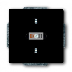 Розетка электрическая ABB Dynasty, безвинтовые клеммы (антрацит) 2011-0-3801