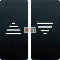 Двойная кнопка для штор с с электро-механической блокировкой (черный) FD17669 - FD17769-M - FD16-BAST