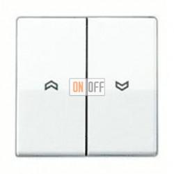 Выключатель управления жалюзи клавишный, 10 А / 250 В~ AS591-5PWW - 509VU