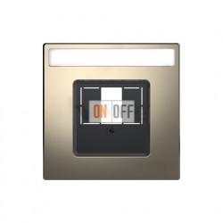 Розетка USB двойная для зарядки Merten D-life, никель металл MTN4366-0000 - MTN4250-6050