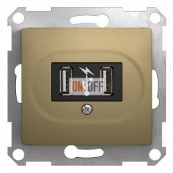 Розетка USB двойная для зарядки, Schneider Glossa титан GSL000432