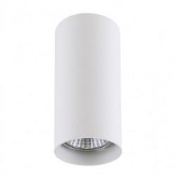 Потолочный светильник Lightstar Rullo 214486