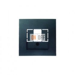 Розетка USB двойная, для зарядка, 1,4 А, вставка антрацит 260005 - 10331606