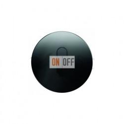 Поворотный выключатель перекрестный  Berker R.classic черное стекло 387700 - 10012055