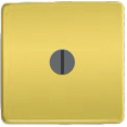 Поворотный переключатель с 2-х мест. 10А 250 V~ FD16-BAST - FD03120-OB