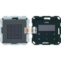 Радиоприемник скрытого монтажа с RDS с динамиком (антрацит) 228028