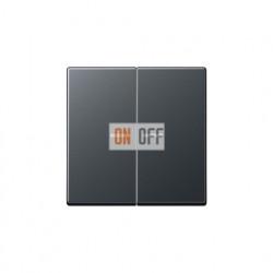 Выключатель двухклавишный с подсветкой, 10 А / 250 В~ 505u5 - A595BFKO5ANM