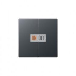 Выключатель двухклавишный, проходной (вкл/выкл с 2-х мест) 10 А / 250 В~ 509u - A595BFANM