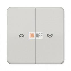 Выключатель управления жалюзи кнопочный, 10 А / 250 В~ 539VU - CD595PLG