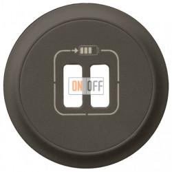 Розетка USB двойная для зарядки, 1500 мА (графит) 67462 - 67956 - 80251