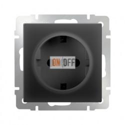 Розетка с заземлением 16 A - 250 В, винтовой зажим, Werkel черный матовый a029860