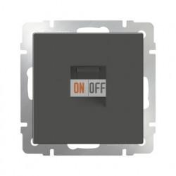 Интернет розетка одинарная 5 категории RJ-45, Werkel серо-коричневый a029858