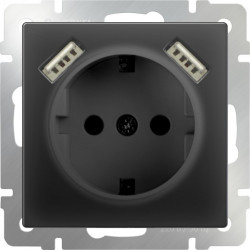 Розетка с заземлением, шторками и USBх2, 16 A - 250 В, винтовой зажим, Werkel черный матовый a033477