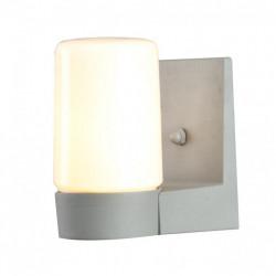 Уличный настенный светильник Arte Lamp Spasso A8058AL-1GY