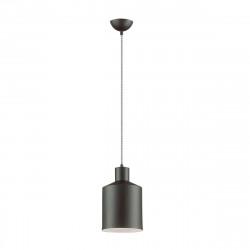 Подвесной светильник Lumion Rigby 3659/1