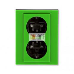 Розетка 2-ая электрическая с заземлением с защитными шторками, цвет Зеленый/Дымчатый черный, Levit, ABB